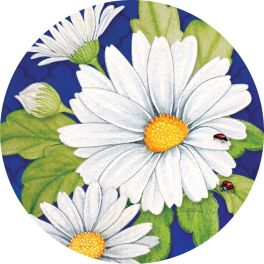 Delightful Daisies Accent Magnet