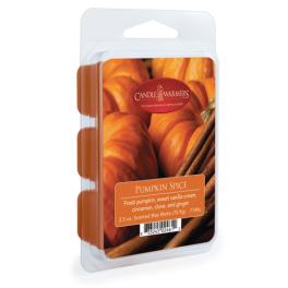 Pumpkin Spice 2.5oz Wax Melt