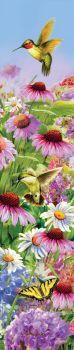 Hummingbird Cone Flowers Yard Expression