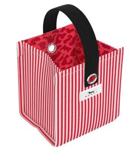 Scout Mini Package - Chandy Candy