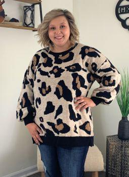 Wild Love Plus Sweater - Cheetah
