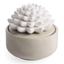 Succulent Porcelain Diffuser